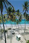 Bottom Bay Beach, east coast, Barbados, Windward Islands, West Indies, Caribbean, Central America