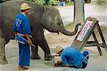 Peinture d'éléphant avec son tronc, Mae Sa Elephant Camp, Chiang Mai, Thaïlande, Asie