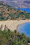 Aerial view of Vai beach and palm trees, eastern Crete, island of Crete, Greece, Mediterranean, Europe