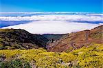 View of Parc Nacional de la Caldera de Taburiente from Roque de los Muchachos, La Palma, Canary Islands, Spain, Atlantic, Europe