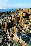 The Giant's Causeway, UNESCO World Heritage Site, County Antrim, Northern Ireland, United Kingdom, Europe