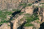 Village of Al Ain, Al Jabal Al Akkar region, Sultanate of Oman, Middle East