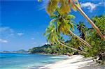 Plage, Seychelles