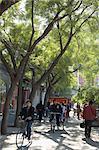 Un arbre doublé avenue dans un quartier zone Hutong de Beijing, Chine, Asie
