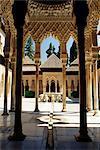 Cour de la Lions Palais de l'Alhambra, patrimoine mondial de l'UNESCO, Grenade, Andalousie (Andalousie), Espagne, Europe