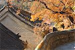 Autumn scene, Tanzhe Temple, Beijing, China, Asia