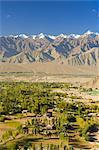 Vallée de l'indus et Stok Kangri massif, Leh, Ladakh, Himalaya indien, Inde, Asie