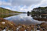 Loch an Eilein, near Aviemore, Cairngorms National Park, Highlands, Scotland, United Kingdom, Europe