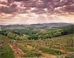 Vineyards and cloudy sky near San Gimignano, Tuscany, Italy, Europe