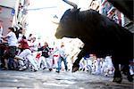 Encierro (Encierro), festival de San Fermin, Pampelune, Navarre, Espagne, Europe