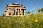 Temple de Poséidon (Neptune), Paestum, UNESCO World Heritage Site, Campanie, Italie, Europe
