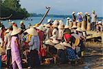 Femme au chapeau conique chez les poissons du marché de la rivière Thu Bon Hoi An, Danang, Vietnam, Indochine, Asie du Sud