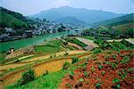 Rice paddies and brick-maker at Longsheng in northeast Guangxi Province, China
