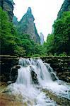 Les affleurements calcaires spectaculaires, des forêts et des cascades du parc forestier de Zhangjiajie dans la région pittoresque de Wulingyuan, Province de Hunan, Chine