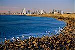 Front de mer dans la banlieue de Saint Kilda, regardant vers la ville de Melbourne, Melbourne, Victoria, Australie