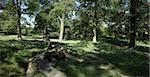 Richmond Park, Richmond, Surrey.