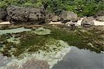 Magpupungko, île de Siargao, Surigao del Norte, Mindanao, Philippines
