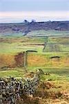 Mur d'Hadrien, Northumberland, Angleterre, Royaume-Uni