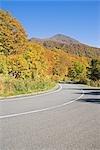 Roadway Through Trees,Fukushimaa Prefecture,Japan