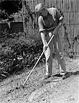1940s ELDERLY MAN IN GARDEN USING HOE BETWEEN ROWS OF FRESHLY PLANTED BULBS