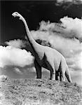 1950ER JAHRE STATUE DES GROßEN AUSGESTORBEN LANGEN HALS GIGANTISCHE BRONTOSAURUS AUF HILLTOP JURASSIC TOURISTENATTRAKTION LANGE HALS GIGANTISCHE SOUTH DAKOTA USA