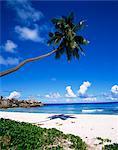 Grand Anse, La Digue island, Seychelles, océan Indien, Afrique