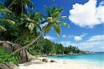 Beach, Anse Intedance, Mahe, Seychelles, Indian Ocean, Africa