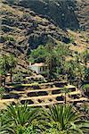 Valle Gran Rey, La Gomera, Iles Canaries, Espagne, Atlantique, Europe