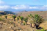 Area between Alajero and Erquito, La Gomera, Canary Islands, Spain, Europe