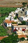 Maisons à côté de plantations de bananes, Santiago, La Gomera, îles Canaries, Espagne, océan Atlantique, l'Europe
