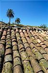 Dachziegel, südöstlichen Gegend um Las Hayas, La Gomera, Kanaren, Spanien, Atlantik, Europa