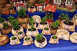 Clay pots for sale in the market, La Serena, Chile, South America