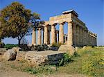 Temple E (5th century BC), Selununte, Sicily, Italy