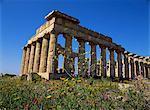Temple E, datant du Ve siècle av. J.-C., Selinunte, près de Castelventrano, Sicile, Italie, Europe
