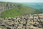 Kalkstein Pflaster, Malham Cove, Malham, Yorkshire Dales National Park, North Yorkshire, England, Vereinigtes Königreich, Europa