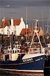 Pêche bateaux, Libourne, Fife, Écosse, Royaume-Uni, Europe
