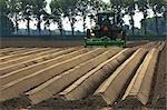 Farmer Plowing Field, Wolphaartsdijk, Zeeland, Netherlands
