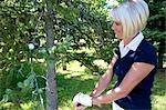 Golfspieler, die Blick auf einen Golfball in einen Baum stecken