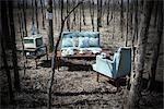 Mobilier de salon Vintage dans une forêt