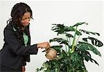 Femme d'affaires d'arrosage des plantes