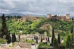 L'Alhambra, à Grenade, Andalousie, Espagne