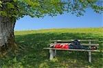 Boy Sleeping on Bench, Black Forest, Baden Wuerttemberg, Germany