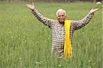 farmer in field, hands in air
