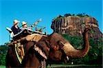 Sri Lanka, Sigiriya, Elephant carrying tourist during safari