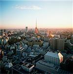 Japon, Tokyo, vue de Tokyo tower au crépuscule