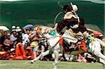 Chine, Szechuan (Sichuan), région de Kham, cavalier A Khampa montrer ses talents au summer festival nomade.