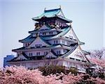 Japan, Osaka, Osaka Castle surrounded by Sakura.