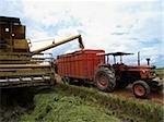 rice harvesting machines