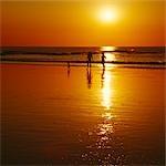 Gens sur la plage au coucher du soleil