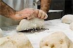 Baker's Hands Kneading Dough